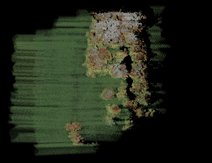 Fuzzy image of grass and trees/shrubs captured via Lidar